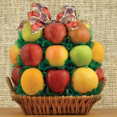All Fruit Extravaganza Basket-KP