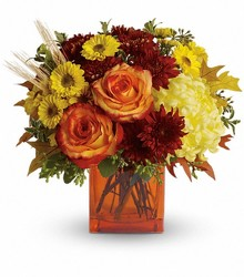 Fall Expression from Brennan's Florist and Fine Gifts in Jersey City