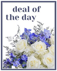 Deal of the Day - Winter from Brennan's Florist and Fine Gifts in Jersey City