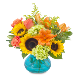 Sunshine Day from Brennan's Florist and Fine Gifts in Jersey City