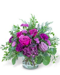 Nordic Magenta from Brennan's Florist and Fine Gifts in Jersey City