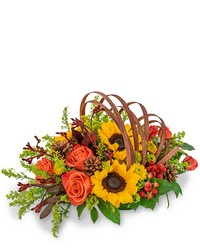 Creative Cornucopia from Brennan's Florist and Fine Gifts in Jersey City