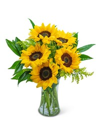 Sprinkle of Sunflowers from Brennan's Florist and Fine Gifts in Jersey City