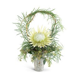 Wild Child Protea from Brennan's Florist and Fine Gifts in Jersey City