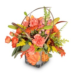 Leaf Your Worries Behind from Brennan's Florist and Fine Gifts in Jersey City