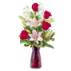 Tender Love from Brennan's Florist and Fine Gifts in Jersey City