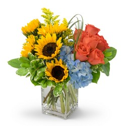 Summer Fun from Brennan's Florist and Fine Gifts in Jersey City