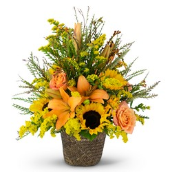 Fall Harvest Basket from Brennan's Florist and Fine Gifts in Jersey City