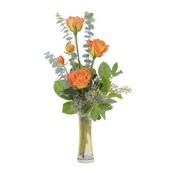 Orange Simplicity from Brennan's Florist and Fine Gifts in Jersey City