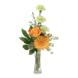 Orange U Glad from Brennan's Florist and Fine Gifts in Jersey City