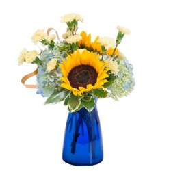 Good Morning Sunshine from Brennan's Florist and Fine Gifts in Jersey City