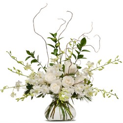 White Elegance from Brennan's Florist and Fine Gifts in Jersey City