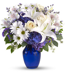 Beautiful in Blue from Brennan's Florist and Fine Gifts in Jersey City